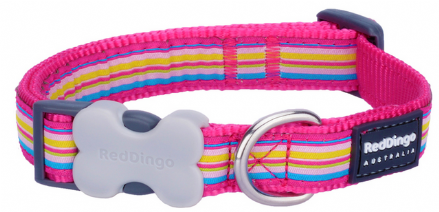 Red Dingo dog collar pink multi stripe